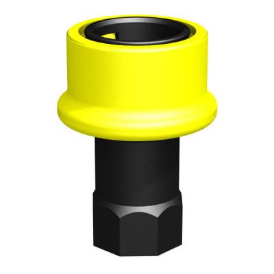 Schnellkupplung Mutterteil 1 Zoll Dry-Shut-Dose auf 1 Zoll BSP IG